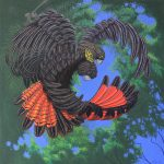 glossy-black-cockatoo_hollow-threat_dailan-pugh_2013