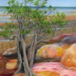 dwarf_mangrove_dudley_point_resize